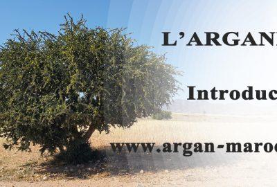 introduction arganier