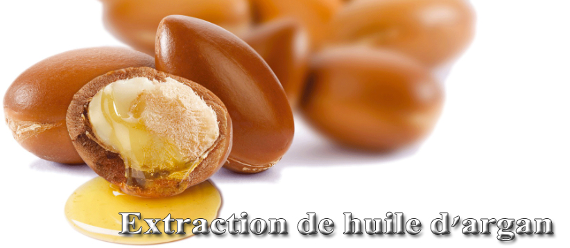 Extraction de huile d'argan